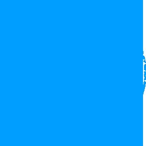 logo_verite_briques
